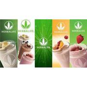 herbalife_nutrition_ shakes